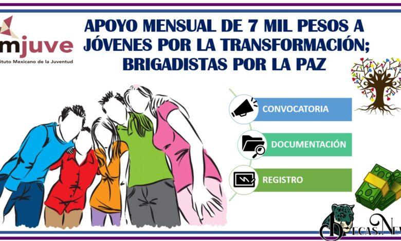 apoyo-mensual-de-7-mil-pesos-a-jovenes-por-la-transformacion-brigadistas-por-la-paz