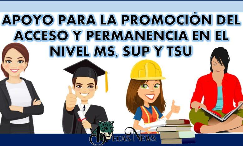 Apoyo para la promoción del acceso y permanencia en el nivel MS, SUP y TSU: Convocatoria, Registro y Requisitos