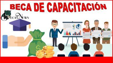 Beca de Capacitación 2021-2022: Convocatoria, Registro y Requisitos