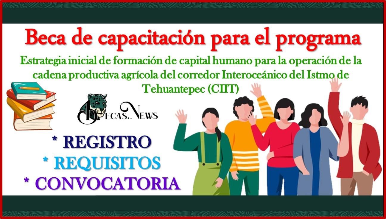 """Beca de capacitación para el programa """"Estrategia inicial de formación de capital humano para la operación de la cadena productiva agrícola del corredor Interoceánico del Istmo de Tehuantepec (CIIT)"""" 2021-2022 Convocatoria, Registro y Requisitos"""