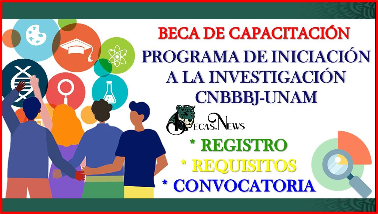 """Beca de capacitación """"Programa de Iniciación a la Investigación CNBBBJ-UNAM"""" 2021-2022 Convocatoria, Registro y Requisitos"""