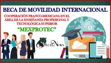 """Beca de Movilidad Internacional: """"Cooperación Franco-mexicana en el Área de la Enseñanza Profesional y Tecnológica Superior MEXPROTEC"""" 2021-2022 Convocatoria, Registro y Requisitos"""