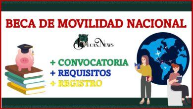 Beca de Movilidad Nacional 2021-2022 Convocatoria, Registro y Requisitos