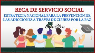 """Beca de servicio social """"Estrategia Nacional para la Prevención de las Adicciones a través de Clubes por la Paz"""" 2021-2022 Convocatoria, Registro y Requisitos"""