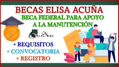 Beca Federal para Apoyo a la Manutención 2021-2022 Convocatoria, Registro y Requisitos