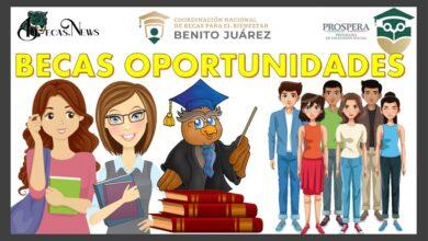 Beca Oportunidades: Convocatoria, Registro y Requisitos