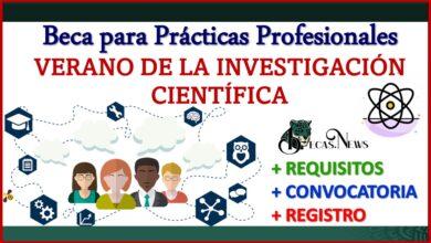 beca-para-practicas-profesionales-verano-de-la-investigacion-cientifica