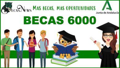 Becas 6000: Convocatoria, Registro y Requisitos