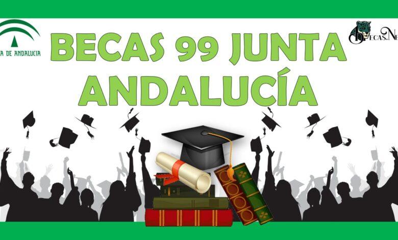 Becas 99 Junta Andalucía: Convocatoria, Registro y Requisitos
