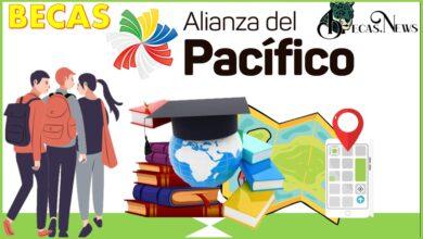 Becas Alianza del Pacífico: Convocatoria, Registro y Requisitos