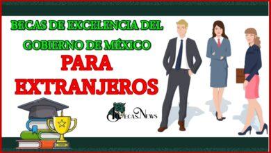 Becas de Excelencia del gobierno de México para extranjeros 2021-2022 Convocatoria, Registro y Requisitos