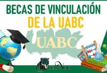 becas-de-vinculacion-de-la-uabc