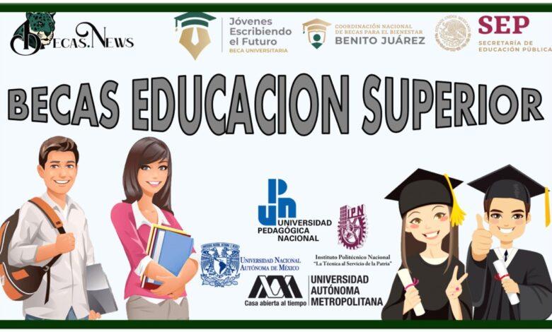 Becas Educación Superior: Convocatorias, Requisitos y Registro