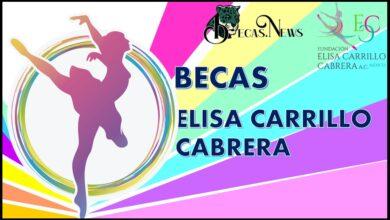 Becas Elisa Carrillo Cabrera: Convocatoria, Registro y Requisitos