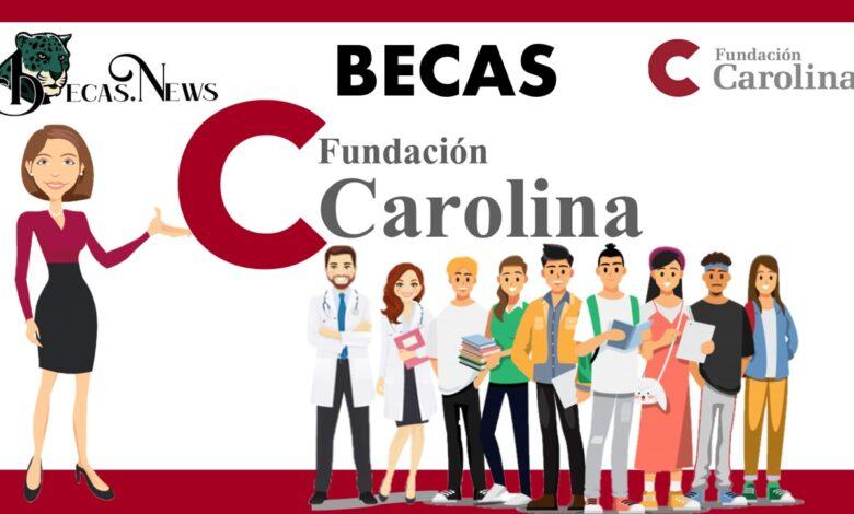 Becas Fundación Carolina : Convocatorias, Requisitos y Registro