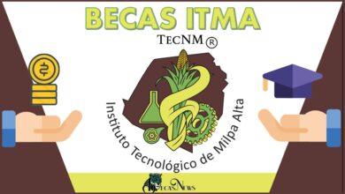 Becas ITMA: Convocatoria, Registro y Requisitos