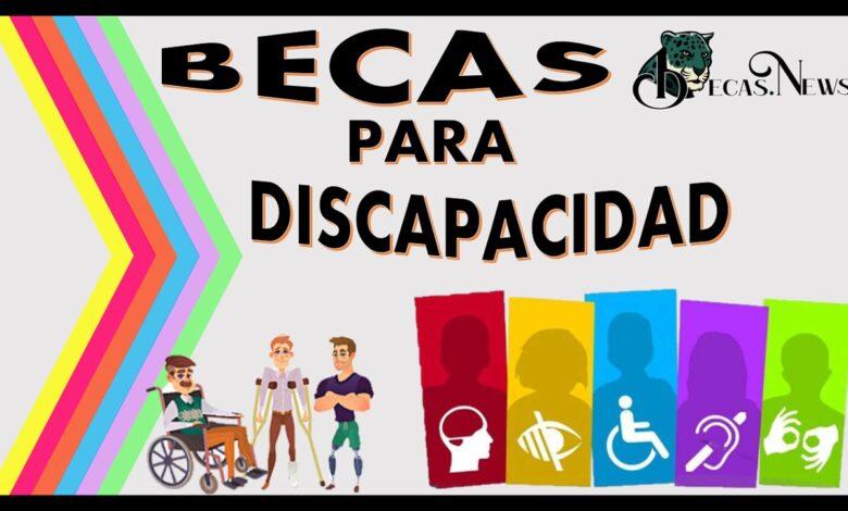 Becas para discapacidad: Convocatorias, Requisitos y Registro