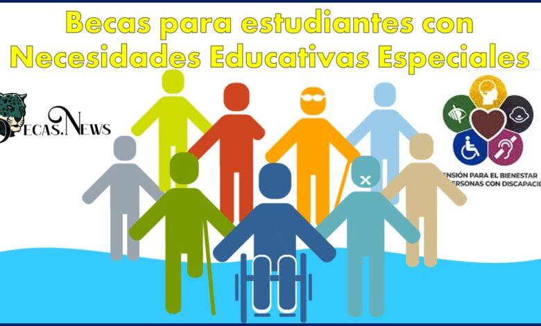 Becas para estudiantes con Necesidades Educativas Especiales