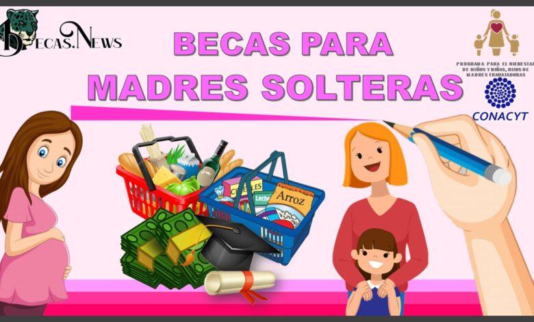 Becas para Madres Solteras: Convocatorias, Requisitos y Registro