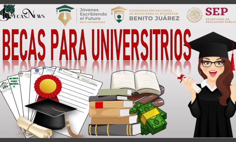 Becas para Universitarios / Becas Federales para Universitarios/ Qué Becas hay para Universitarios Convocatorias y registro