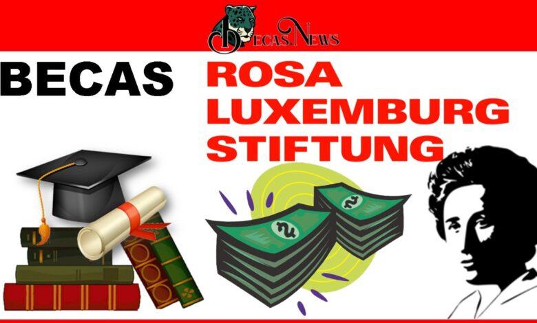 Becas Rosa Luxemburgo: Convocatoria, Registro y Requisitos