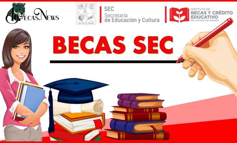 Becas SEC: Convocatoria, Registro y Requisitos