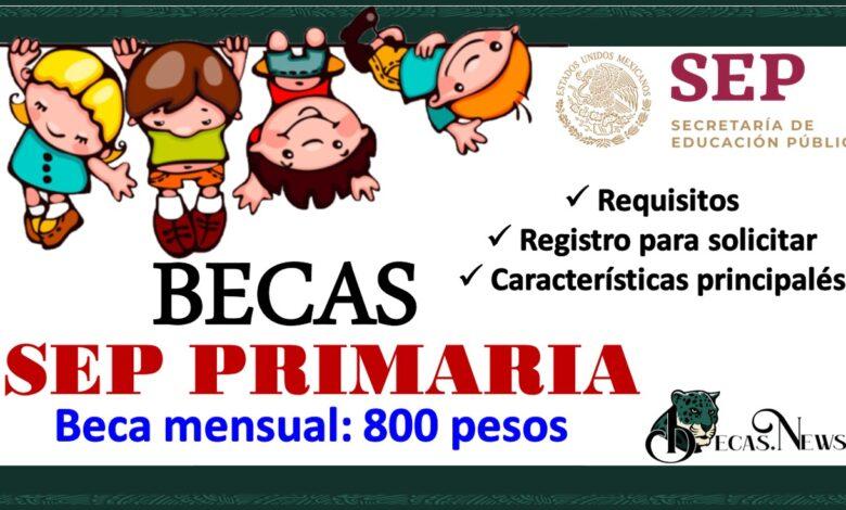 Becas SEP Primaria 2021-2022: Convocatoria, Registro y Requisitos