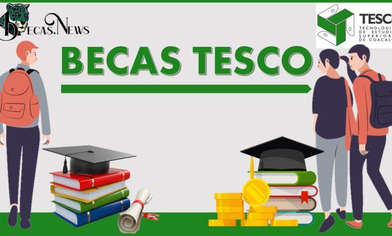 Becas TESCO 2021-2022: Convocatoria, Registro y Requisitos