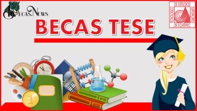 Becas TESE 2021-2022: Convocatoria, Registro y Requisitos