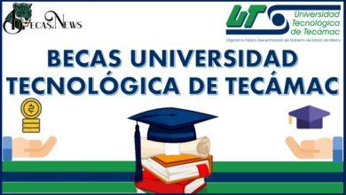 Becas Universidad Tecnológica de Tecámac 2021-2022: Convocatoria, Registro y Requisitos