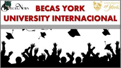 Becas York University Internacional: Convocatoria, Registro y Requisitos