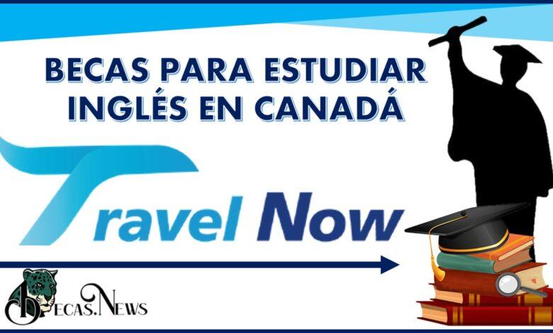 Becas Travel Now Para estudiar inglés en Canadá: Convocatoria, Registro y Requisitos